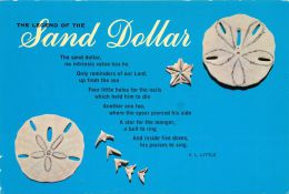 Legend Of The Sand Dollar, USA Postcard Used Posted To UK 1988 Stamp - Poissons Et Crustacés
