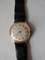 VINTAGE ;  ZEX - Relojes Ancianos