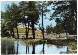 Anneyron - L'étang - France