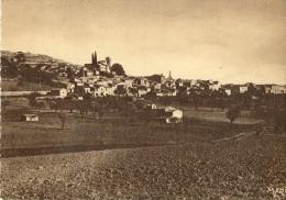 Cpsm-St Michel L'observatoire(04)-vue Générale - Other Municipalities