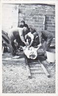 23656 - Photo Abbatage Cochon Ferme - Chalons Sur Marne Photographe Boulve -