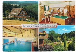 D4537     HOLZSCHLAG : Pension Waldheim Mit Poolbillard ( Poolbiljart, Pocketbilliard) - Cartes Postales