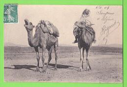 Chamelier En Algerie ..... / Carte écrite En 1909 - Professions