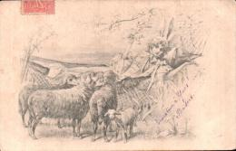ILLUSTRATION BERGERE DANS UN HAMAC ET MOUTONS CIRCULEE 1905 - 1900-1949