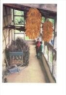 01 - Musée De La Bresse - Domaine Des Planons - Lieu Du Séchage Maïs Fromage En Garde Manger Brouette Panier Fagots - Cultures