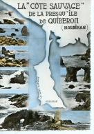 La Cote Sauvage De La Presqu´ile De Quiberon (Morbihan) Géographique Multivues N°5212 Rema - Dentelée - Quiberon