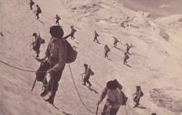 Militaria - Régiment Chasseurs Alpins - Manoeuvres