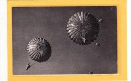 SPORTS / PARACHUTISME / Carte Photo De Parachutiste Descente En Groupe - Parachutisme