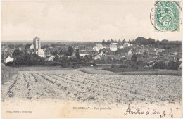 89. SEIGNELAY. Vue Générale - Seignelay