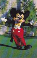 Florida Orlando Mickeky Mouse Walt Disney World