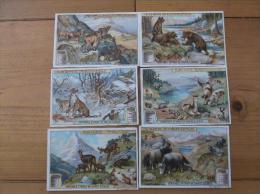 Chromos Liébig Série  De 6  La Faune Alpine TBE - Liebig