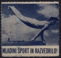 1950´s Slovenia Yugoslavia - Gymnastics / Pommel Horse -  Membership / Charity Stamp - Used - Gymnastiek