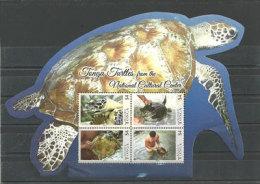 Les Tortues Marines Des Iles Tonga (Océanie). Un BF Neuf ** Hautes Faciales $ 16,00 ., Emission 2013 - Reptiles & Batraciens