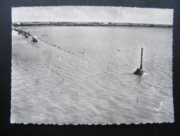 1571 - En Avion Au Dessus De : Passage Du Gois - Camions Et Voitures Qui Selon L´expression Populaire....  (recto-verso) - Ile De Noirmoutier