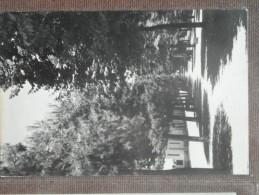 GROTTAMMARE  - PINETA - Italia