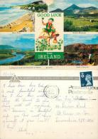 Good Luck From Ireland Postcard Used Posted To UK 1989 Gb Stamp - Other