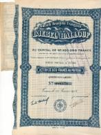 DJEBEL HALLOUF Action 800 Francs 25 Coupons - Afrique