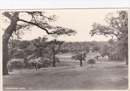 RICHMOND PARK - Surrey