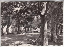 GREOUX LES BAINS 04 - Hotel Du Grand Jardin ( Vu Du Parc ) - CPSM GF 1960 -  Alpes De Haute Provence - Gréoux-les-Bains