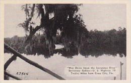 Florida Cross City Suwanne Gables Dexter Press