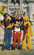 Florida Orlando Goofy Mickey and Pluto Pose Walt Disney World