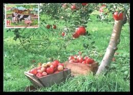 Maxicard Belarus 2014 Mih. 1005 Year Of Family Farm. Apples - Belarus