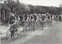 9306 - Tour De Romandie 1958 Equipe Cilo Dernière étape Lausanne-Porrentruy Avec Au Verso  Flyer Publicitaire Cilo - Cyclisme