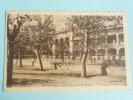 BLIDA - Ecole De Garçons B.BONNIER - Blida