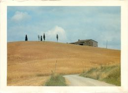 Terre D'Orcia, Italy Italia Postcard Used Posted To UK 1986 Stamp - Italie