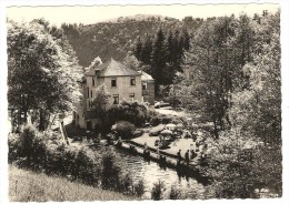 Hôtel  <  LES MERLETTES  >  ( Propr. A.Mareschal Lambert)  - La  Piscine  Et  La  Terrasse - La-Roche-en-Ardenne