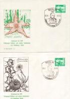 GERMANIA, DDR 1985 - 4 BUSTE FIGURATE CON ANNULLO CURT  BACKEBERG (Botanico) - Cactus