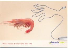 PROMOCARD N°  5376  VOLENDO - Publicité