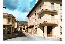 CARTOLINA NIMIS (UDINE) VIA ROMA - Udine