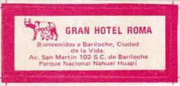 ARGENTINA BARILOCHE GRAN HOTEL ROMA VINTAGE LUGGAGE LABEL