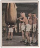 Zigaretten Sammelbild Deutscher Sport Bild Nr 69 Boxen In Der Schule - Zigaretten