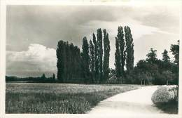Grandchamp, Areuse - NE Neuchâtel