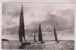 CPM ARCACHON, CONTRE JOUR SUR LES REGATES - Segelboote