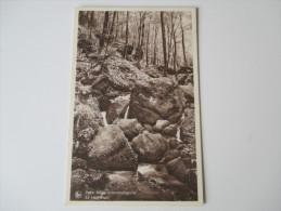 AK / Bildpostkarte Luxembourg 1952 Petite Suisse Luxembourgeoise. Le Hallerbach - Sonstige