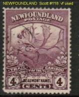 NEWFOUNDLAND   Scott  # 118  VF USED - Newfoundland