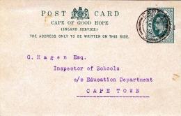 CAPE OF GOOD HOPE 1904 - Half Penny Ganzsache Auf Pk Nach Cape Town - Südafrika (...-1961)