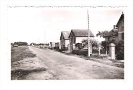 CP SAINT GERMAIN SUR AY  N° 53-232 - Francia