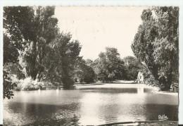 CPM CARTE POSTALE MODERNE - 34 - HERAULT -MONTPELLIER  écrite  Timbrée 1951 - Montpellier