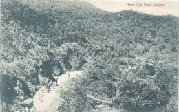 Ceylon, Nanu - Oya Pass (near Nuwara Eliya)   (Sri Lanka)  (Ceylan) - Sri Lanka (Ceylon)