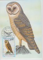 S. TOME E PRINCIPE  1983  Birds  CORUJA  Maximum Card # 55826 - Owls