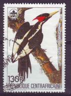 Repubblica Centroafricana, 1985 - Campephilus Principales - Nr.712 Usato° - Repubblica Centroafricana