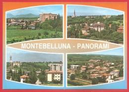 CARTOLINA NV ITALIA - MONTEBELLUNA (TV)  - Panorama - Vedutine  - 10 X 15 - Treviso