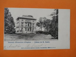 ECAUSSINNES - Souvenir D'Ecaussinnes D'Enghien. - Château De M. Cousin -cpa - Ecaussinnes