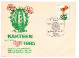 DDR, GERMANIA -1985  - ERFURT - CARTOLINA KAKTEEN IGEA 1985 - Cactus