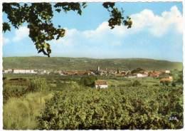 Gigean - Vue Générale - France