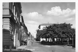 Canino (Viterbo) - Corso Matteotti - Viterbo